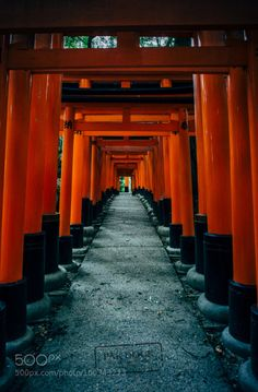 The way back at Fushimi Inari - Kyoto by PAkDocK  red travel japan kyoto sony mountain doors kioto viaje voigtlander fushimi inari japon tori pakdock