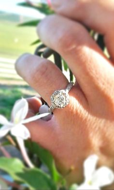 14K White Gold Twisted Pave Halo Engagement Ring - Perfection
