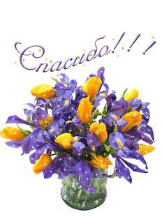 Анимашки: Спасибо, страница №8 Jolie Images, Ikebana, Birthdays, Thankful, Animation, Holiday, Flowers, Cards, Poster
