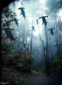 Shark Forest - Worth1000 Contests