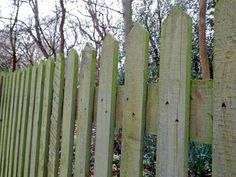 Wooden garden fencing ideas for fence installation London: including back garden fences, front gardens fences, traditional or contemporary. Wood Privacy Fence, Metal Fence, Wooden Fence, Wooden Garden, Diy Projects Garage, Diy Garden Projects, Garden Fencing, Garden Art, Rustic Fence