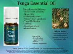 Tsuga Essential oil   Ask me how Young Living can change your life like they've changed mine. Celynn@live.ca. Member Number 1737761. Or order for yourself here: https://www.youngliving.com/signup/?sponsorid=1737761&enrollerid=1737761