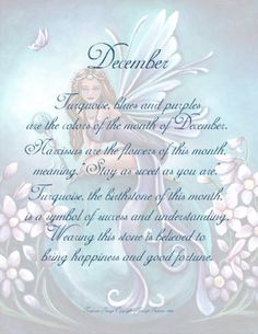 December - Each fairy is dressed in associated colors and surrounded by flowers of the birth month, seated on a birthstone crystal ball, holding gemstone wand. Astrology Zodiac, Sagittarius, Zodiac Signs, December Baby, December Birthday, Unicorn Fantasy, Love Fairy, Birth Month, Beautiful Fairies
