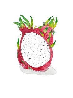 Dragon Fruit Watercolor Print Art