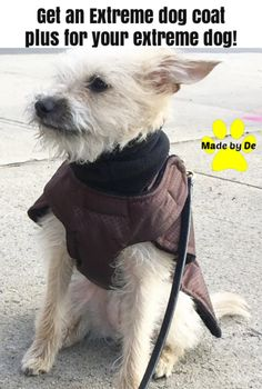 Extra durable fabrics can help you get a longer life for that dog coat. Small Dog Coats, Small Dogs, Puppy Find, Dog Winter Coat, Waterproof Fabric, Little Dogs, Warm And Cozy, Puppies, Fabrics