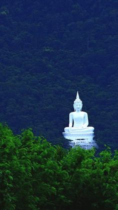 Buddha Statue in Forest Pak Chong, Thailand. A must see! Places Around The World, Oh The Places You'll Go, Places To Travel, Places To Visit, Around The Worlds, Laos, Wonderful Places, Beautiful Places, Thailand Travel