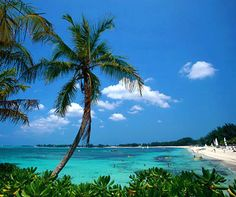 Mi nombre es Shawn yo he viajado a Bahamas. He pasado cinco meses en la Bahamas. (I had to make this up, but i would love to visit the Bahamas some day! Vacation Places, Vacation Destinations, Dream Vacations, Vacation Spots, Places To Travel, Vacation Ideas, The Places Youll Go, Places To See, The Tourist