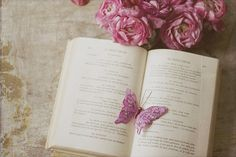 Le Papillion   Flickr - Photo Sharing!
