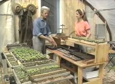 How to build unheated greenhouses for winter harvests & year-round gardening (Video) | TreeHugger  MY DREAM!!!!!
