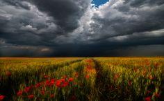 Storm VIII - Photography by Tamás Hauk