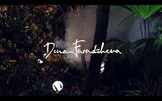 insects in a jar // SS'12 by Dina Faradzheva. Dina Faradzheva printed SS'12
