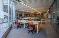 Bolon Silence Gracious in the library at El Colegio de Mexico in Mexico City