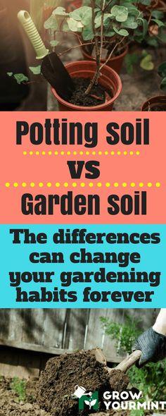 Potting Soil Vs Garden Soil – Differences Which Mean A Lot #soil#pottingsoil#gardensoil#garden#gardening#growyourmint.com