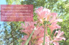 """""""Forgiveness is a strange kind of walled garden - exceedingly ugly as we approach it, but breathtakingly beautiful once we've stepped inside."""" - Pam Thorson #caregivers #caregiving"""