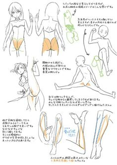Muscles art tutorial                                                                                                                                                                                 More