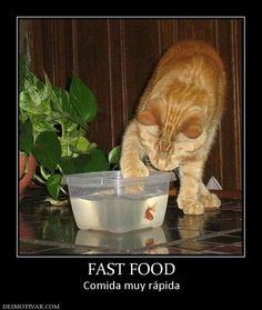 FAST FOOD Comida muy rápida