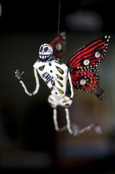 on monarch wings