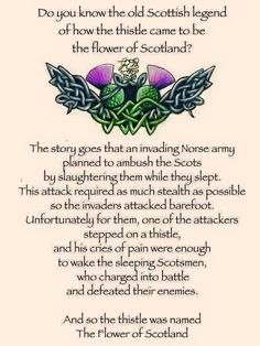 The legend of the thistle. Scottish sayings.