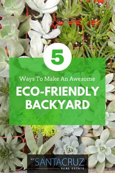 If you are curious about taking your green home to the next level, here are 5 ways to make an eco-friendly backyard, your conscious oasis!