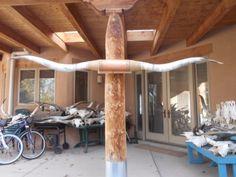 MOUNTED STEER LONG HORN 7' 3 1/2 LONGHORN BULL mount HORNS COW