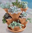 Succulent terracotta pot, it's like 10 pots in one!