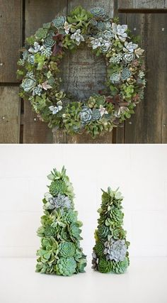 Succulent Wreath and Trees