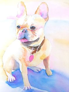 French Bulldog  Original Watercolor painting by Carlin Blahnik. http://www.carlinart.com/ Adorable white French Bulldog Portrait. This sitting puppy is looking off into the distance, mouth open with pink tongue showing, she seems ready to play. This was a commissioned pet portrait. The original has sold but prints are available.