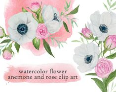 Anemone and rose floral watercolor clip art Watercolor Rose, Watercolor Background, Wedding Invitation Design, Gift Tags, My Design, Handmade Items, Clip Art, Creative, Monitor