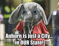ALABAMA IS OUR STATE!!.. ROLL TIDE!!