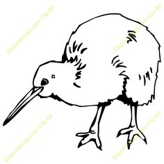 line drawings of kiwi Bird Line Drawing, Bird Drawings, Cool Drawings, New Zealand Tattoo, Bird Template, Bird Clipart, Kiwi Bird, Nz Art, Birds And The Bees
