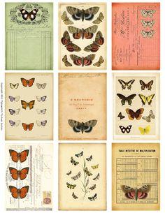 Ephemera's Vintage Garden: Free Weekly Printable: Butterfly Ephemera ATC's