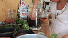 2 DAKİKADA TERARYUM YAPIMI Voss Bottle, Water Bottle, Garden Terrarium, Miniatures, Drinks, Drinking, Beverages, Water Bottles, Drink