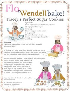 Bake Cookies with William Wegman's Flo & Wendell — Perfect Sugar Cookie Recipe by Tracey Zabar