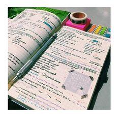 by studyharder_