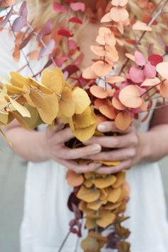 Lovely Autumn board yesterday . Today lets pin the beautiful shades in this image as suggested by Mary .