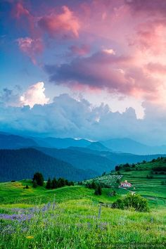 Beautiful scene, clouds, mountains, grass and flowers.