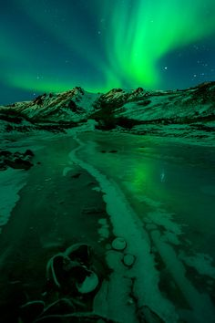 Aiming to see the Aurora on Bell Island. Beautiful World, Beautiful Places, Color Of Life, Celestial, Go Green, Science And Nature, Shades Of Green, Nature Photos, Northern Lights