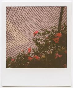 Photo Diary: Summer Color Theory featuring Impossible Project - Urban Outfitters - Blog