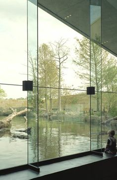 Glass Fin Structures by Innovative Structural Glass: Flint RiverQuarium. Albany, GA.