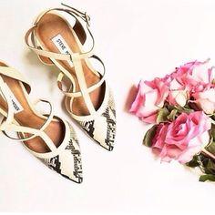 da65842132c  trechicfashion has the perfect wedding season shoe- the SURFICE Steve  Madden Heels