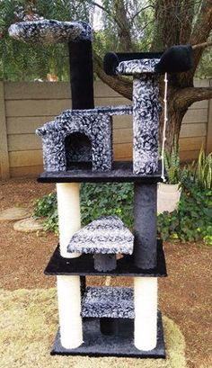 Find Pet Accessories in Randburg! Search Gumtree Free Classified Ads for Pet Accessories and more in Randburg. Buy And Sell Cars, Playpen, Pet Accessories, Pet Products, Baby Animals, Pets, Outdoor Decor, Stuff To Buy, Baby Pets