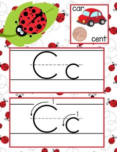 LADY BUG Theme Classroom Decor / ABC Cards with illustrations / Handwriting / font: ABC print / JPEGS and PDF / ARTrageous Fun