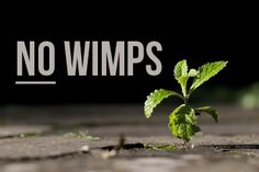 Ministry Isn't for Wimps: Ten Reasons by Jared Moore.  This is just encouraging because of the discouragement.