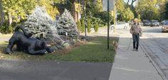 狗子:吓得我当时就是一跳!
