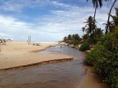 Playa de costa de sauipe. Salvador de bahía . Brasil