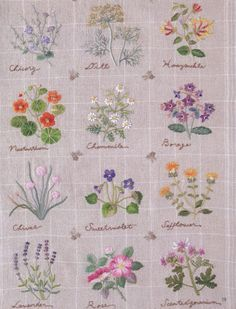 Embroidery On Paper Embroidery patterns - botanical - herb embroidery - japanese embroidery book - ebook - PDF - instant - Herb Embroidery, Brazilian Embroidery Stitches, Embroidery Flowers Pattern, Sashiko Embroidery, Types Of Embroidery, Japanese Embroidery, Silk Ribbon Embroidery, Machine Embroidery, Embroidery Thread