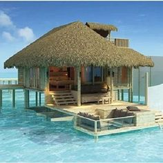 Bahamas - I'd love to be there right now. Could this be any cooler!!?