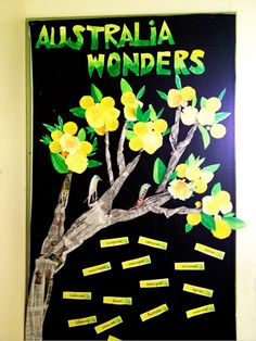 Class display for upcoming Australia unit. Students have added their wonders and created wattle blooms and leaves using pastels. We have added a vocabulary wall beneath for those tricky words like marsupial and monotreme. :)