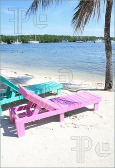 Picture of Colorful beach lounge chairs on the beach by a palm tree