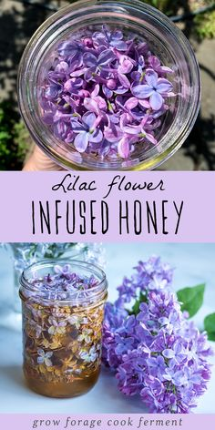 This lilac infused honey is easy to make and a delicious way to preserve the beautiful taste of these edible spring flowers! This lilac infused honey is easy to make and a delicious way to preserve the beautiful taste of these edible spring flowers! Edible Plants, Edible Flowers, Lilac Flowers, Spring Flowers, Diy Flowers, Flower Food, Wild Edibles, Tea Recipes, Honey Recipes